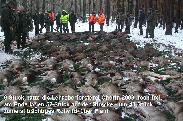Der Mindestabschussplan – Perversion der Jagdethik und des Jagdrechts
