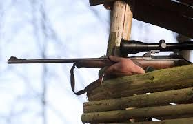 Strafbare Drückjagden – sind Förster und Schützen jetzt Straftäter?