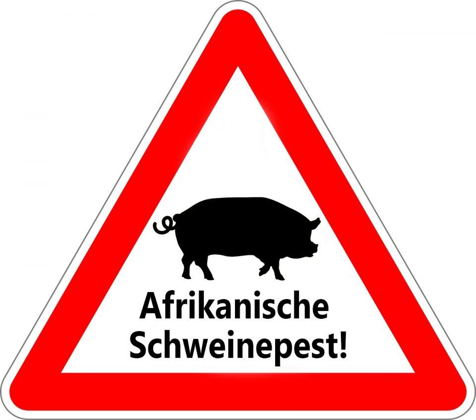 Afrikanische Schweinepest (ASP) – der sauteure Unsinn!